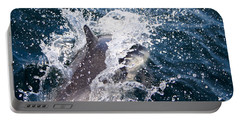 Dolphin Splash Portable Battery Charger