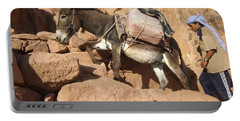 Donkey Of Mt. Sinai Portable Battery Charger