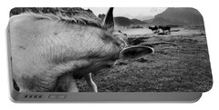 Donkeys Portable Battery Charger