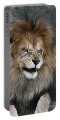 Don't Mess With Me Portable Battery Charger