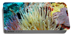 Portable Battery Charger featuring the photograph Double Giant Anemone And Arrow Crab by Amy McDaniel