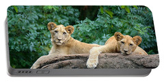 Double Trouble Portable Battery Charger