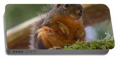 Douglas Squirrel Portable Battery Charger by Paul Rebmann