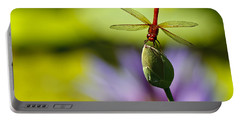Dragonfly Display Portable Battery Charger