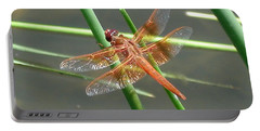 Portable Battery Charger featuring the photograph Dragonfly Orange by Kerri Mortenson