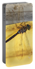 Portable Battery Charger featuring the photograph Dragonfly Web by Melanie Lankford Photography