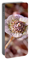Portable Battery Charger featuring the photograph Dry Bloom by Mae Wertz