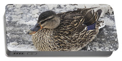 Duck Setting On A Winter Road Portable Battery Charger