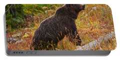 Dunraven Grizzly Portable Battery Charger