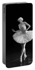 Dying Swan 3. Portable Battery Charger