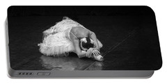 Dying Swan 4. Portable Battery Charger