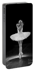 Dying Swan 5. Portable Battery Charger