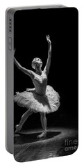 Dying Swan 6. Portable Battery Charger