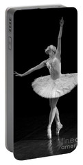 Dying Swan 9. Portable Battery Charger