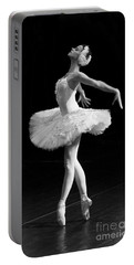 Dying Swan I. Portable Battery Charger