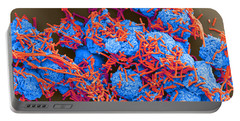 E Coli And Macrophages Sem Portable Battery Charger