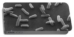 E. Coli Bacteria Sem X16,000 Portable Battery Charger