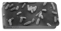 E. Coli Bacteria Sem X18,000 Portable Battery Charger