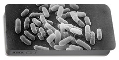 E. Coli Bacteria Sem X22,000 Portable Battery Charger