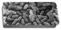 E. Coli Bacteria Sem X24,000 Portable Battery Charger