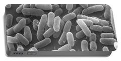 E. Coli Bacteria Sem X25,000 Portable Battery Charger