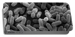E. Coli Bacteria Sem X27,000 Portable Battery Charger
