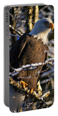 Portable Battery Charger featuring the photograph Eagle Sunset by Stanza Widen