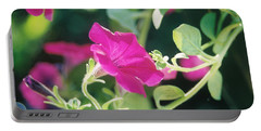 Portable Battery Charger featuring the photograph Early Morning Petunias by Alan Lakin