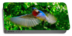 Eastern Bluebird In Flight Portable Battery Charger