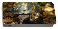 Eastern Box Turtle Portable Battery Charger