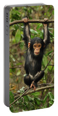 Eastern Chimpanzee Baby Hanging Portable Battery Charger