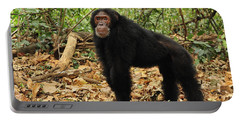 Eastern Chimpanzee Gombe Stream Np Portable Battery Charger