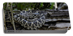 Eastern Diamondback-2 Portable Battery Charger