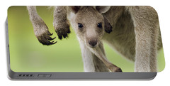 Eastern Grey Kangaroo Joey Peering Portable Battery Charger