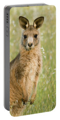 Eastern Grey Kangaroo Juvenile Mount Portable Battery Charger