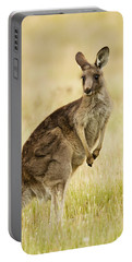 Eastern Grey Kangaroo Mount Taylor Portable Battery Charger