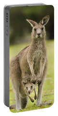 Eastern Grey Kangaroo With Joey Peering Portable Battery Charger
