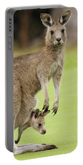Eastern Grey Kangaroo With Joey Portable Battery Charger