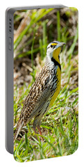 Eastern Meadowlark Portable Battery Charger