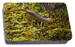 Eastern Newt Aquatic Adult Portable Battery Charger by Christina Rollo