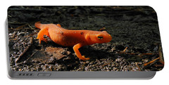 Eastern Newt Red Eft Portable Battery Charger