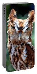 Eastern Screech-owl Portable Battery Charger