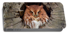 Eastern Screech Owl Portable Battery Charger