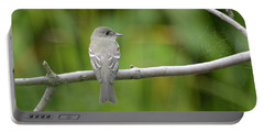 Eastern Wood Pewee Portable Battery Charger