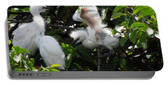 Egret Chicks Portable Battery Charger by Ron Davidson