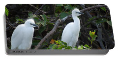 Egret Chicks Waiting To Be Fed Portable Battery Charger by Ron Davidson