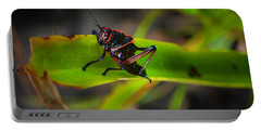 Portable Battery Charger featuring the photograph Elegant Sylvan Katydid by Gary Keesler