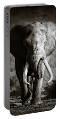 Elephant Bull Portable Battery Charger by Johan Swanepoel