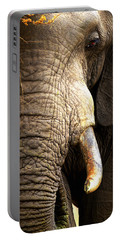 Elephant Close-up Portrait Portable Battery Charger