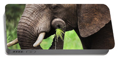 Elephant Eating Close-up Portable Battery Charger